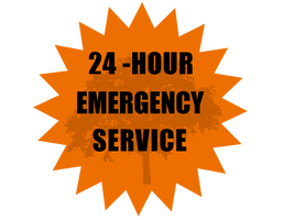 24 HOUR EMERGENCY TREE SERVICE